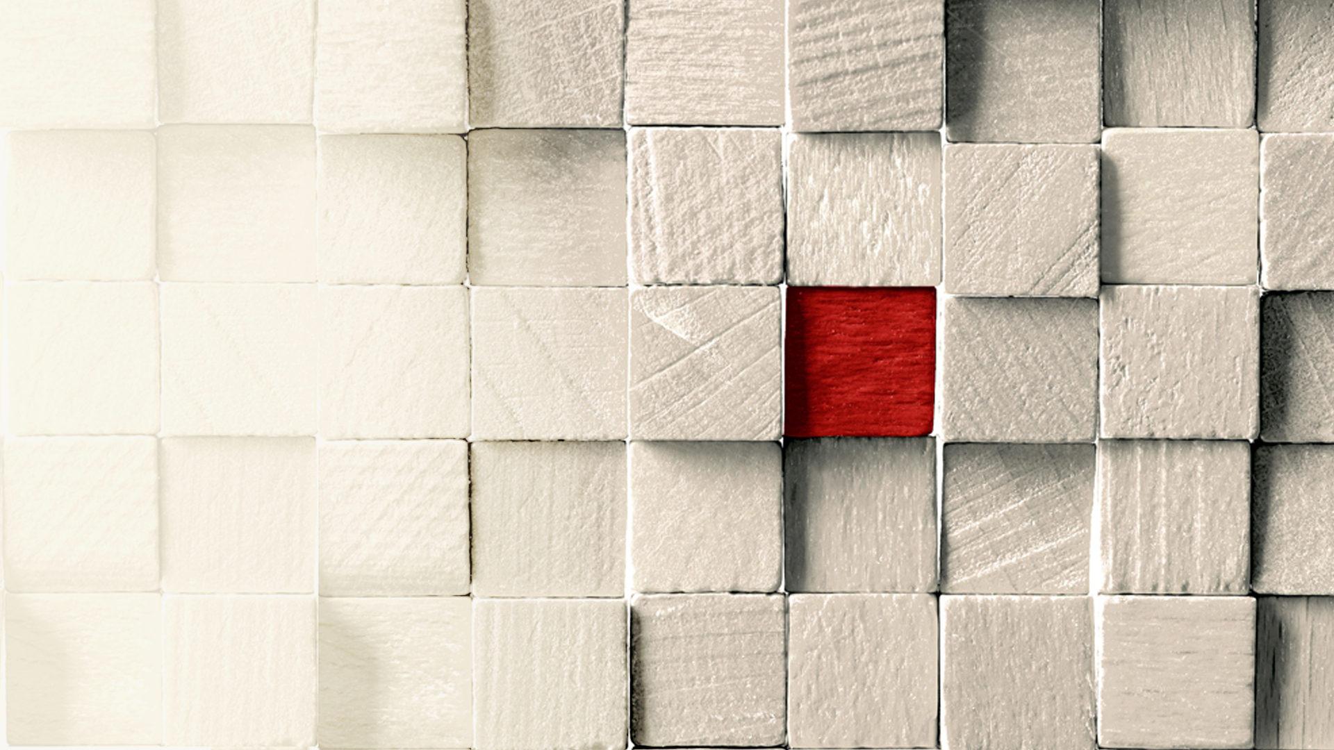 Header Bricks Confinis